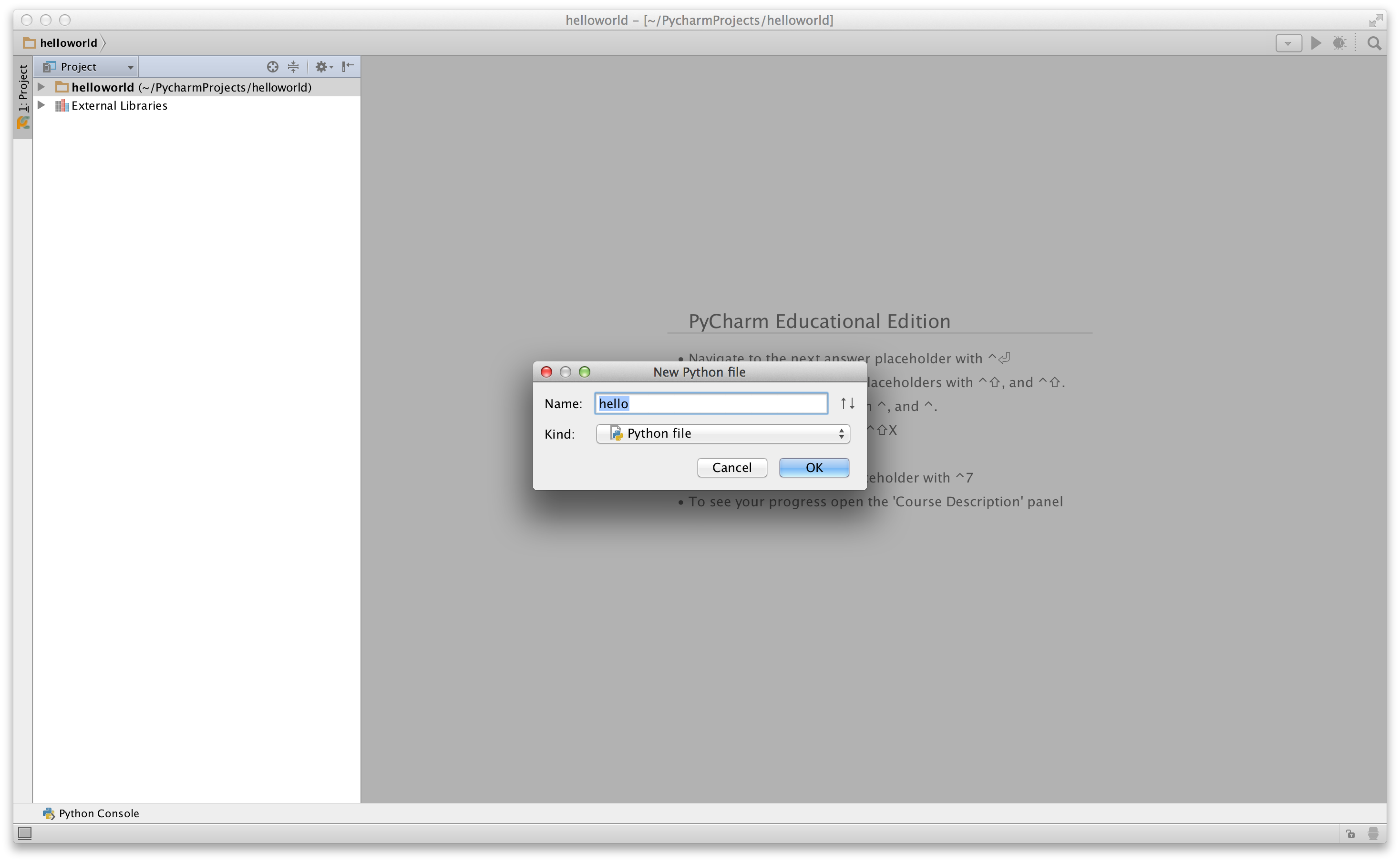 PyCharm New File dialog box